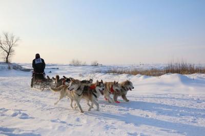 Фото_Новое на празднике «Алтайская зимовка» в 2015 году